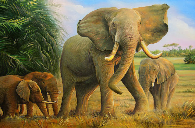 tranh voi