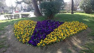 Δήμος Κατερίνης-Δελτίο τύπου: Ένας «κήπος» η Κατερίνη: φύτευση εποχικών λουλουδιών σε πλατείες και νησίδες