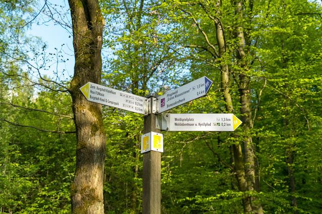 Premiumwanderweg - Traumschleife Burgstadt-Pfad – Kastellaun | Kyrill-Sturmwurferlebnispfad | Wandern-Hunsrück 03