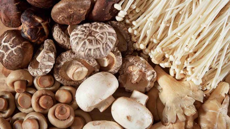 New Study: Eating Mushrooms may Reduce Men's Risk Of Prostate Cancer