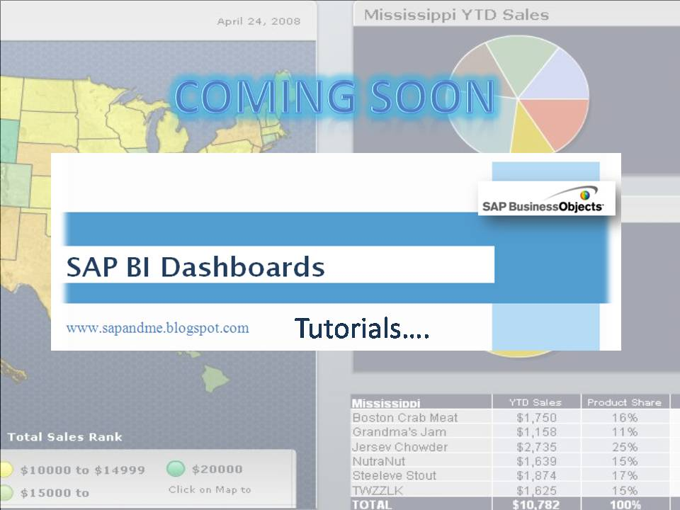 SAP Business Intelligence for Beginners  Coming Soon  SAP - sap for beginners