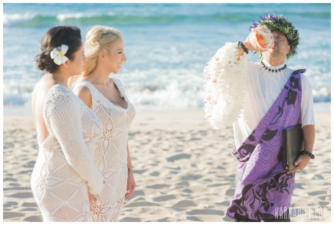 Maui Gay Wedding