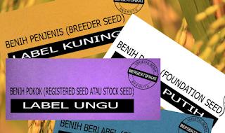 sertifikat benih padi, padi bersertifikat, arti sertifikat, warna sertifikat, bibit unggul
