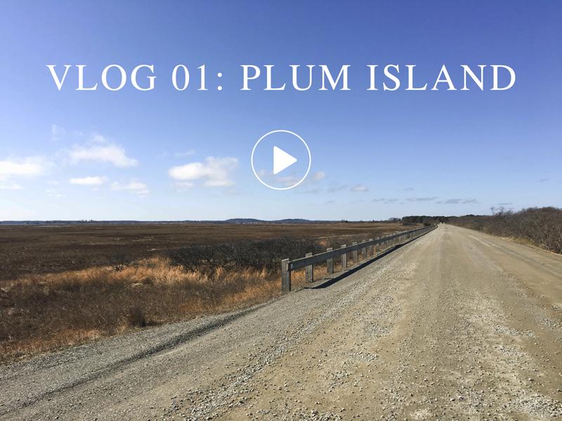 VLOG 01: PLUM ISLAND
