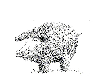 "illustration jeunesse children encre ink cochon pig ""dick king-smith"""