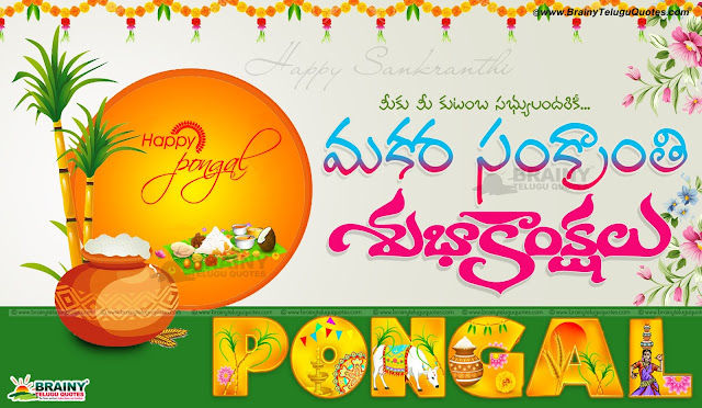 Here is Pongal Sankranthi Kanuma wishes greetings hd images and Beautiful wall papers,  s, ankranti sms telugu, Sankranti Greetings in telugu, sankranti shubhakankshalu in telugu, telugu sankranti messages, makara sankranti telugu wishes quotations for friends, happy sankranti greetings in telugu, best sankranti wallpapers greetings messages sms whatsapp, happy sankranti greetings in telugu, Pongal sankranti kanum greetings wishes wallpapers, Sankranti information in telugu, Sankranti greetings in telugu, Best makara sankranti telugu quotes, happy sankranti telugu images, best sankranti greetings in telugu, best sankranti sms telugu, best sankranti telugu quotes, best sankranti quotes in telugu, best lohri and makara sankranti quotes in telugu, best sankranti telugu greetings, best sankranti telugu images, wish you happy makara sankranti.