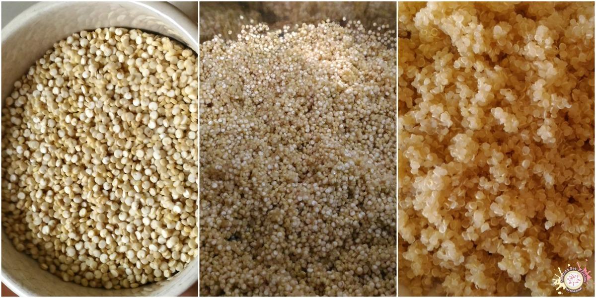 C mo cocinar quinoa sabrina s sea of colors for Cocinar quinoa al vapor