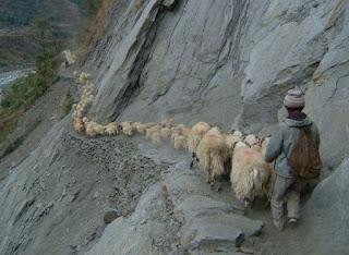 Turismo y economia local Nepal