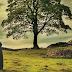 Quinto livro de Outlander será lançado em fevereiro no Brasil!