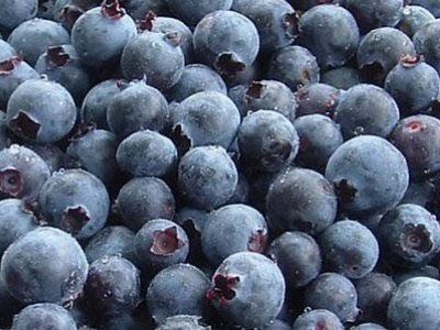 巴西莓(acai berry)