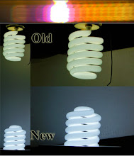 6500K Fluorescent aquarium lights with different light spectrums