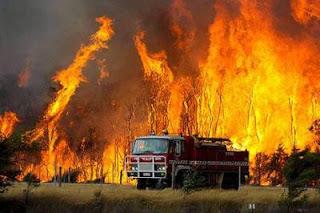 fotografia de bombeiros em combate a incendio