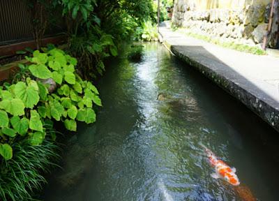 Pesona Wisata Gifu Jepang
