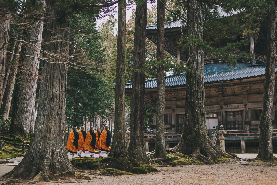 Monks in the primeval forest in Mount Koya, Japan