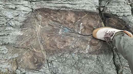 ¿Antiguos gigantes? Enormes huellas descubiertas en la altura de Bolivia