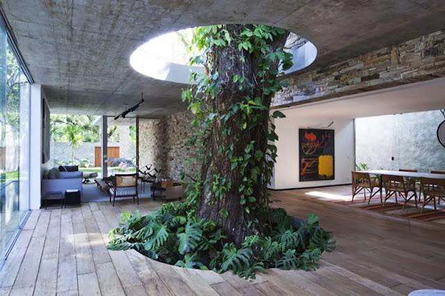 Nature Vs Home