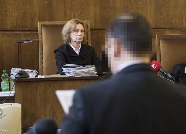 Vizoviczki-ügy - Vizoviczkit hét évre ítélték költségvetési csalás miatt
