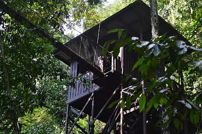 Rumah pohon menuju ke Canopy Walk