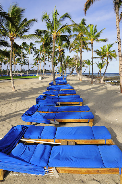 Resort Maui beach chairs cocopalms MauiTrailblazer