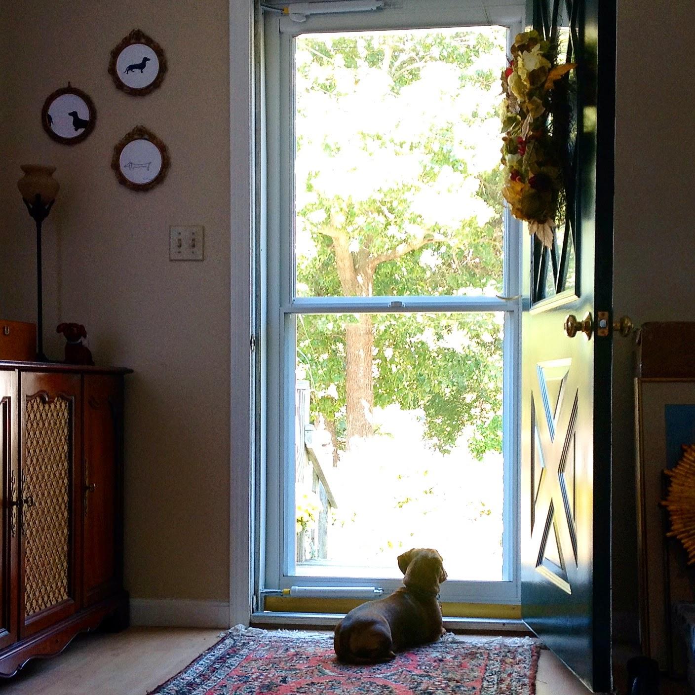 HGTV 2015 Dream House: A Classic Cape On Martha's Vineyard