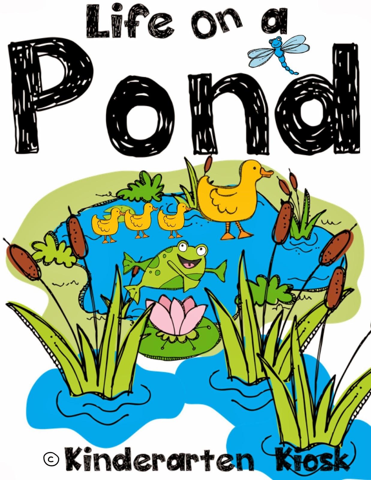 Pond Habitat Worksheets