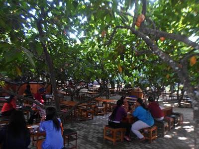 Kebun Kampung Coklat Blitar