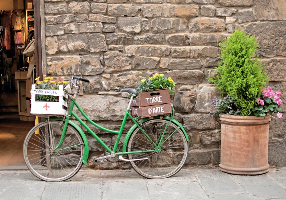 un vélo vert est posé sur un mur dans les caisses, il y a des fleurs