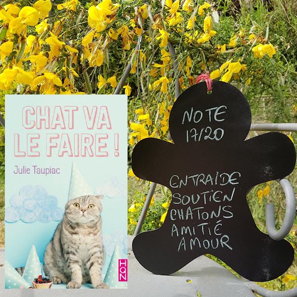 Chat va le faire ! de Julie Taupiac