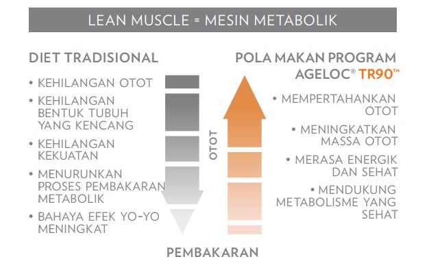 Ageloc Tr90 Nuskin Program Diet Sehat Sehat tanpa Yoyo