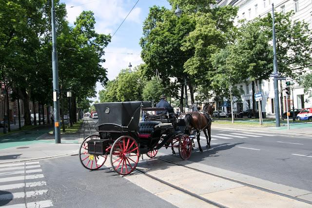Vienna centro