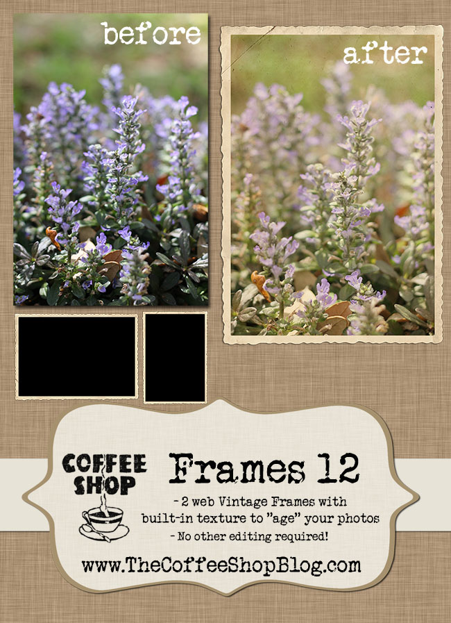 The CoffeeShop Blog: CoffeeShop Frames 12 - Vintage Frame and Edit!