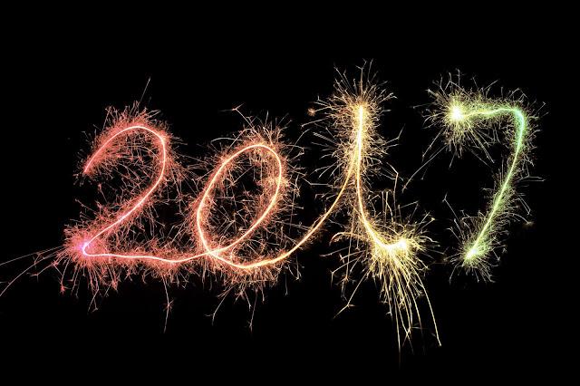 Ano-Nuevo-2017