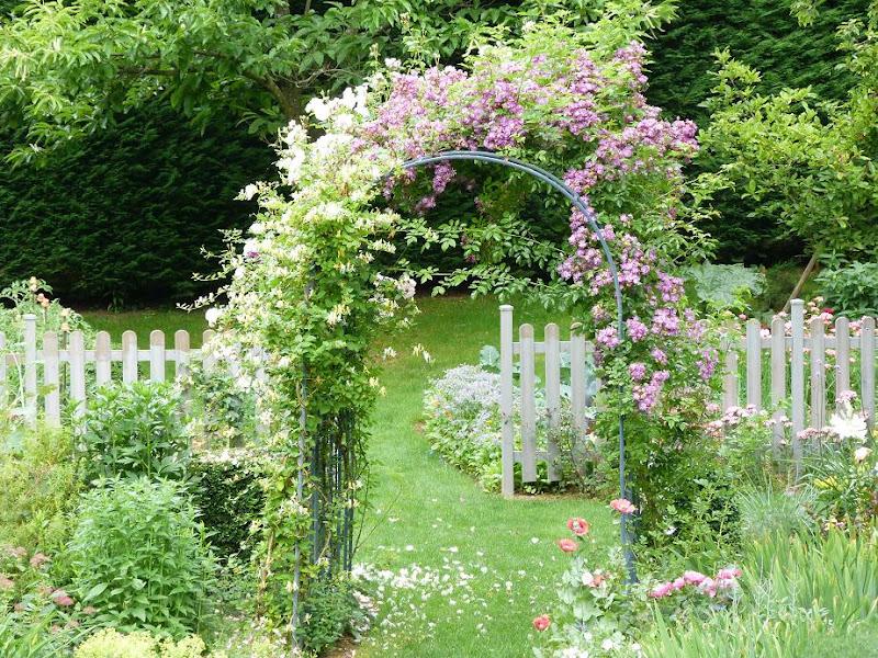 Les pins noirs pergola recto verso - Arche pour rosier grimpant ...