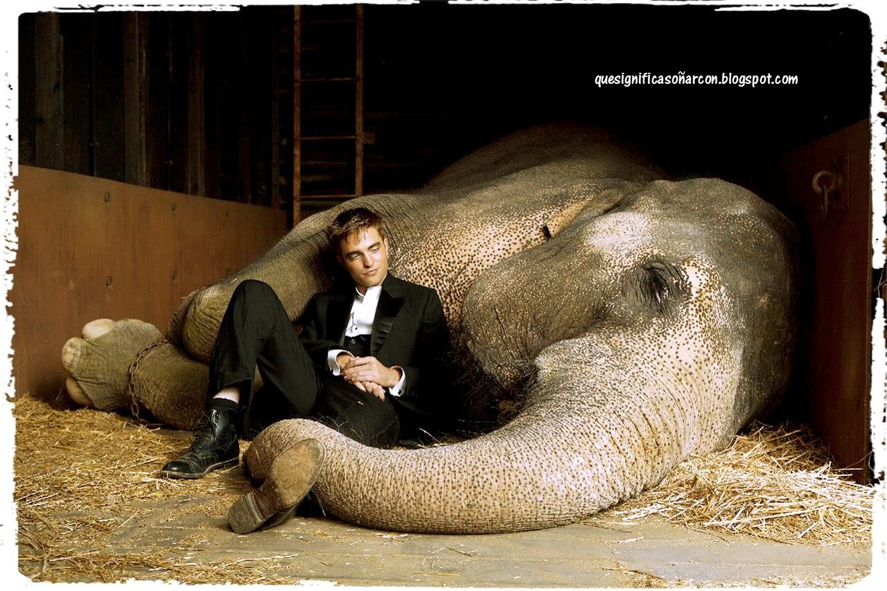 cual es el significado de soñar con elefantes