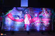 Om Namo Venkatesaya Audio Launch Set 1-thumbnail-10