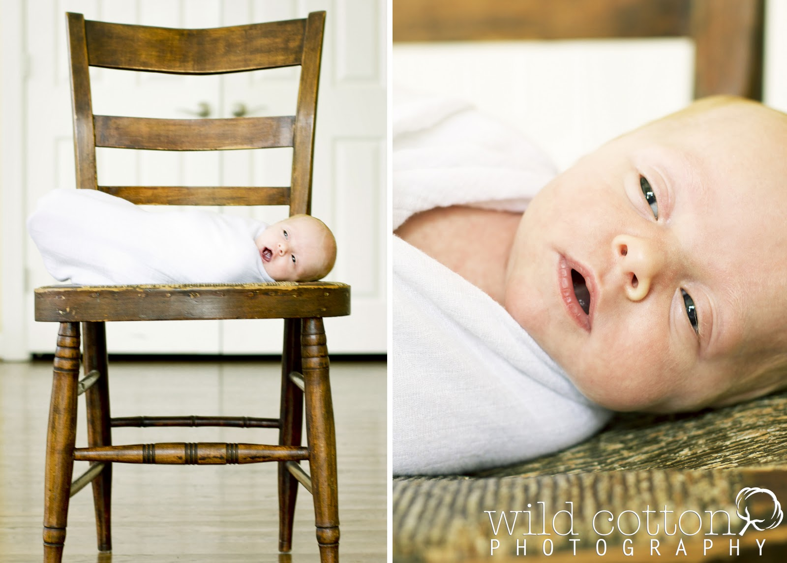 Wild Cotton Photography: Franklin Newborn Photography ...