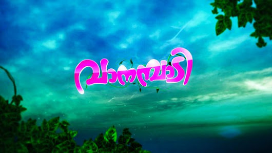 Vanambadi Serial Full Episode 23 November 2017