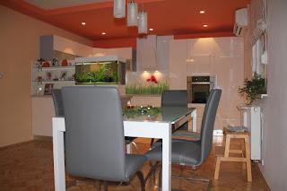 Hiša v Šenjur-ju - kuhinja in jedilnica.
