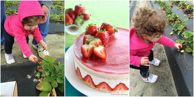 Strawberry Fraisier from LoveandConfections.com #SundaySupper