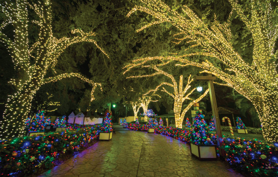 Christmas Town Florida.Freesensenews 5 Fun Things To Do For Christmas Florida Style