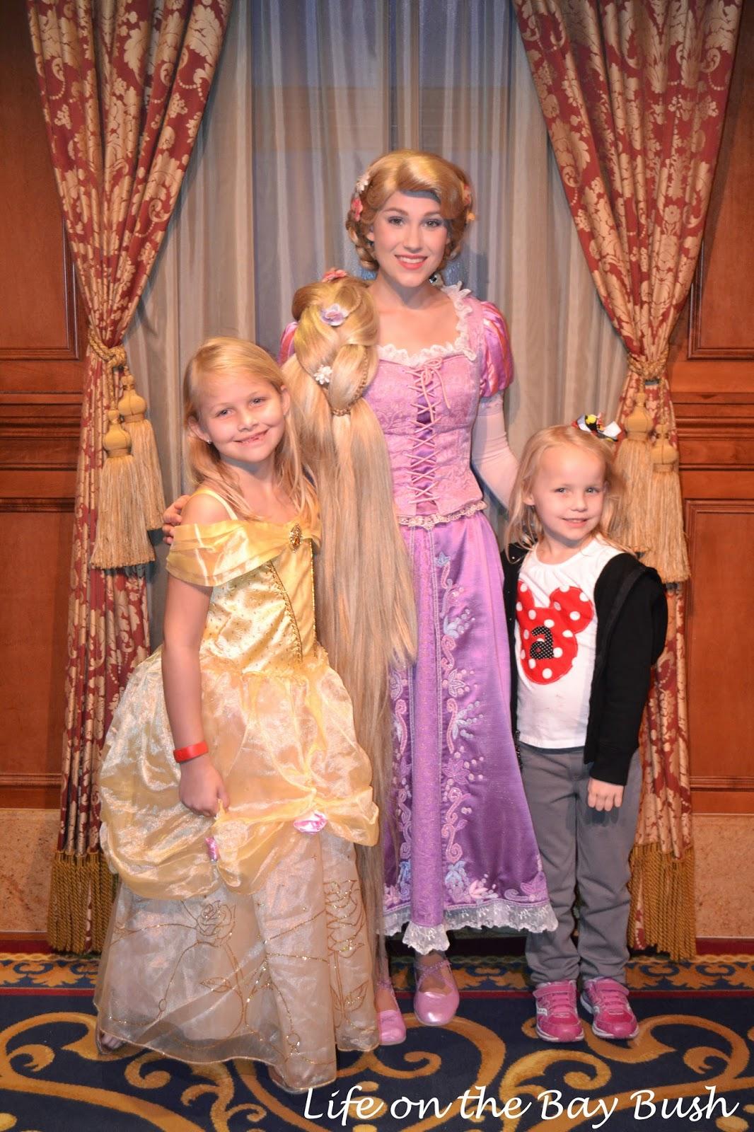Disney's Magic Kingdom Meeting Rapunzel