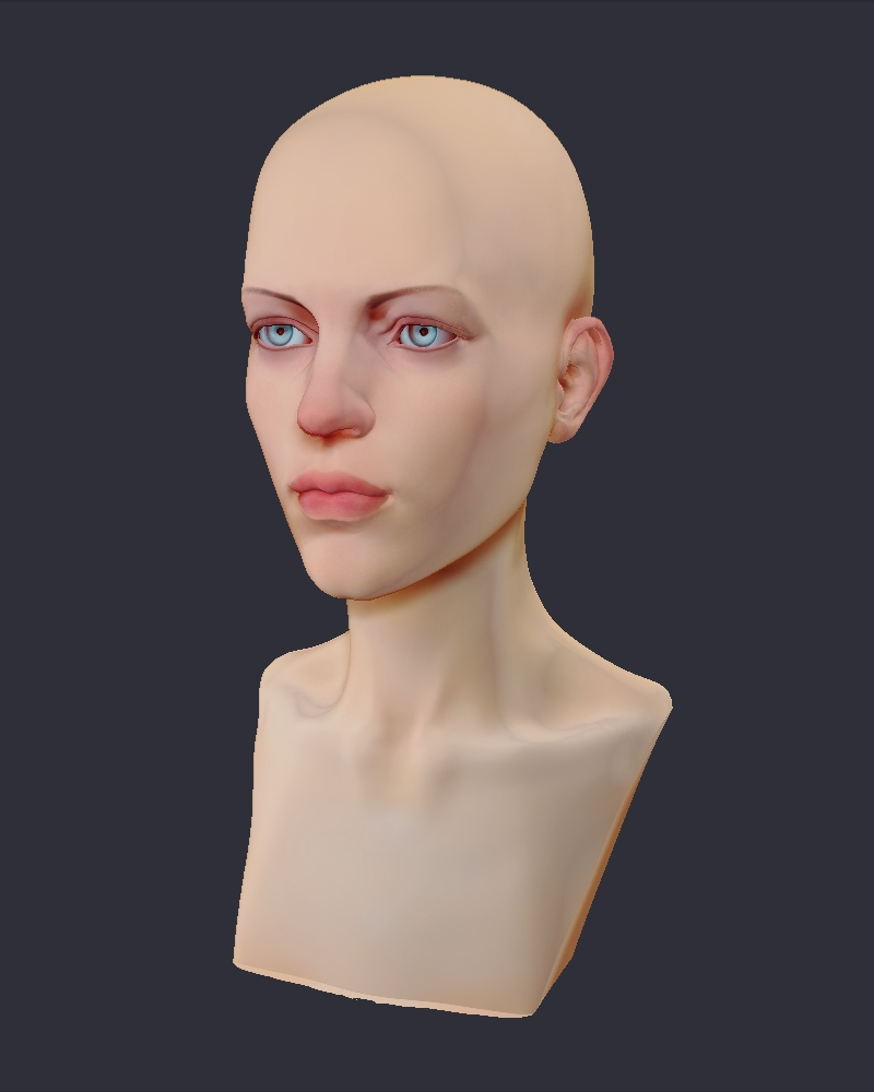 Female D Head Reference