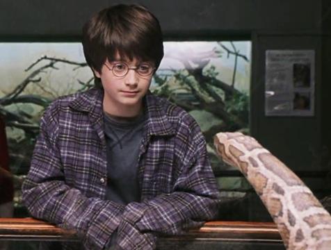 Harry (Daniel Radcliffe) y la boa constrictor en Harry Potter y la Piedra Filosofal - Cine de Escritor