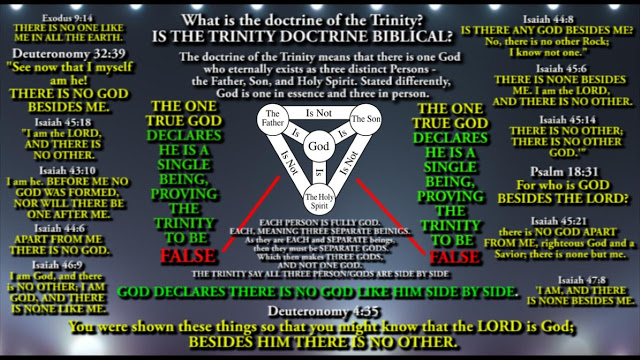 THE MOST SHOCKING COMMENT I have ever received. Titled: The Trinity is NOT Biblical.