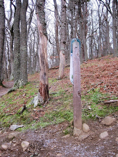 Deeside, a marker post on Craigendarroch