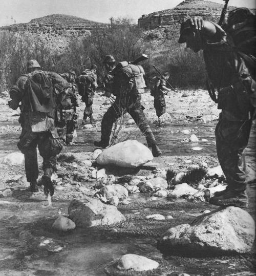 Warfare History Blog: Guerrilla War For Algeria