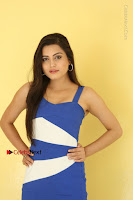 Cute Telugu Actress Shipra Gaur High Definition Po Gallery in Short Dress  0280.JPG