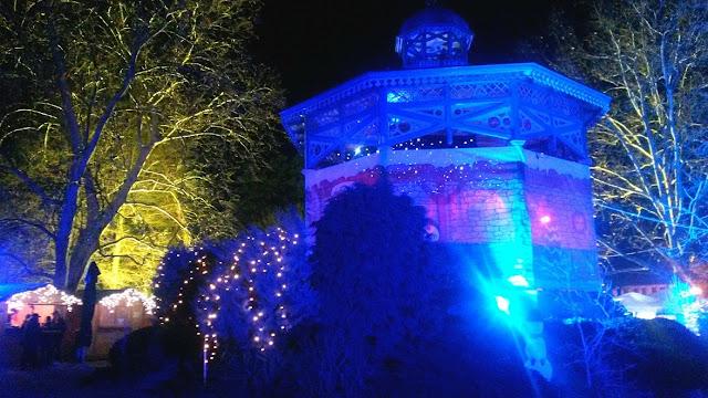 advent, new year, nova godina, bor, christmas tree, božićno drvce, snowflakes, božić, winter, zima, square, božićna bajka, koprivnica, magical, lampice, lights
