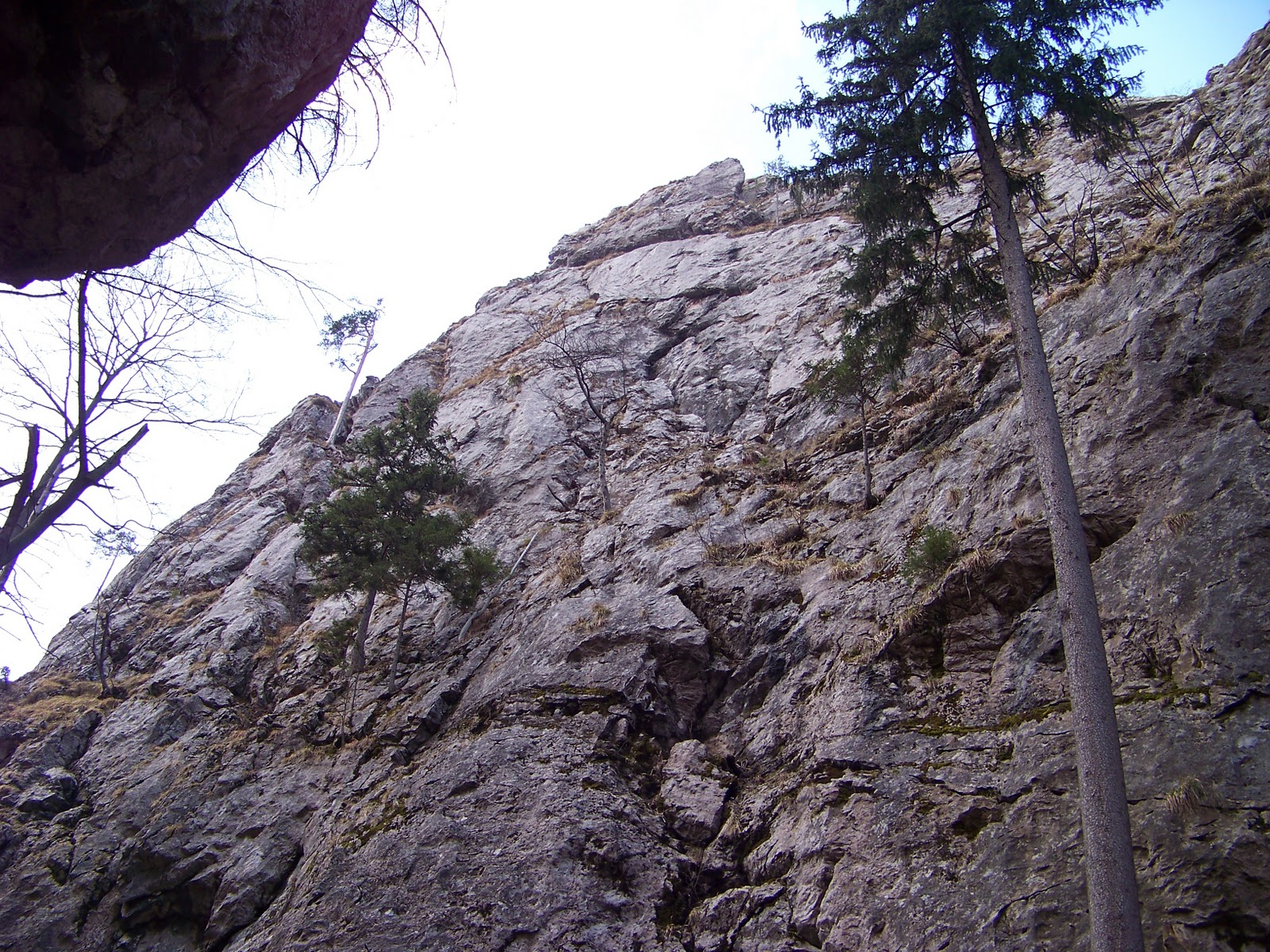 new style 8e1b8 ec023 Freiluft-Geckos: Klettern - Mixnitz Nadelspitz Ost