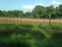 South Ga Farm Land